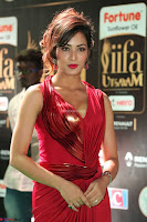 Videesha in Spicy Floor Length Red Sleeveless Gown at IIFA Utsavam Awards 2017  Day 2  Exclusive 25.JPG