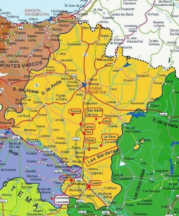 Mapa del Centro y sur de Navarra