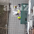 (UZNEMIRUJUĆE FOTOGRAFIJE) Muškarac izvršio samoubistvo skokom s nebodera
