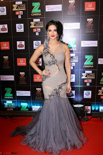 Bollywood Celebrities on the Red Carpet Of Zee Cine Awards 2017 Exclusive 003.JPG