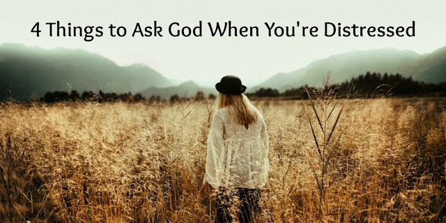 4 Things to Ask God when distressed, fearful, or feeling hopeless - Psalm 143.