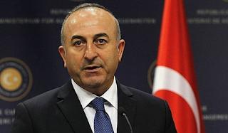 Η Τουρκία προσφέρει ανθρωπιστική βοήθεια για τις πυρκαγιές