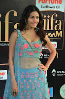Amyra Dastur in Flower Print Choli Transparent Chunni at IIFA Utsavam Awards012.JPG