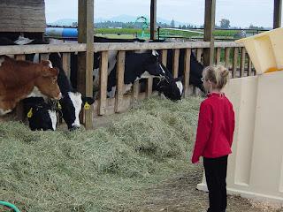 homesteading family reality stars