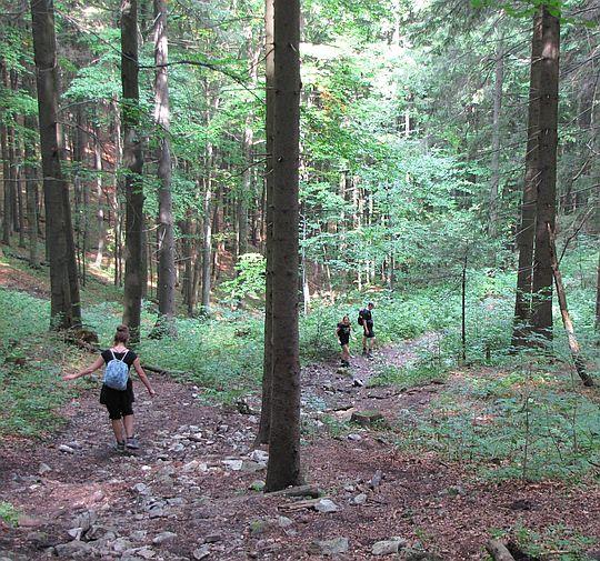 Końcówka stromego zejścia z płaskowyżu Geravy.