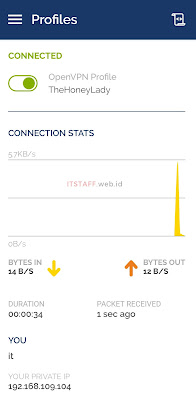 Connected Profile OpenVPN - ITSTAFF.web.id