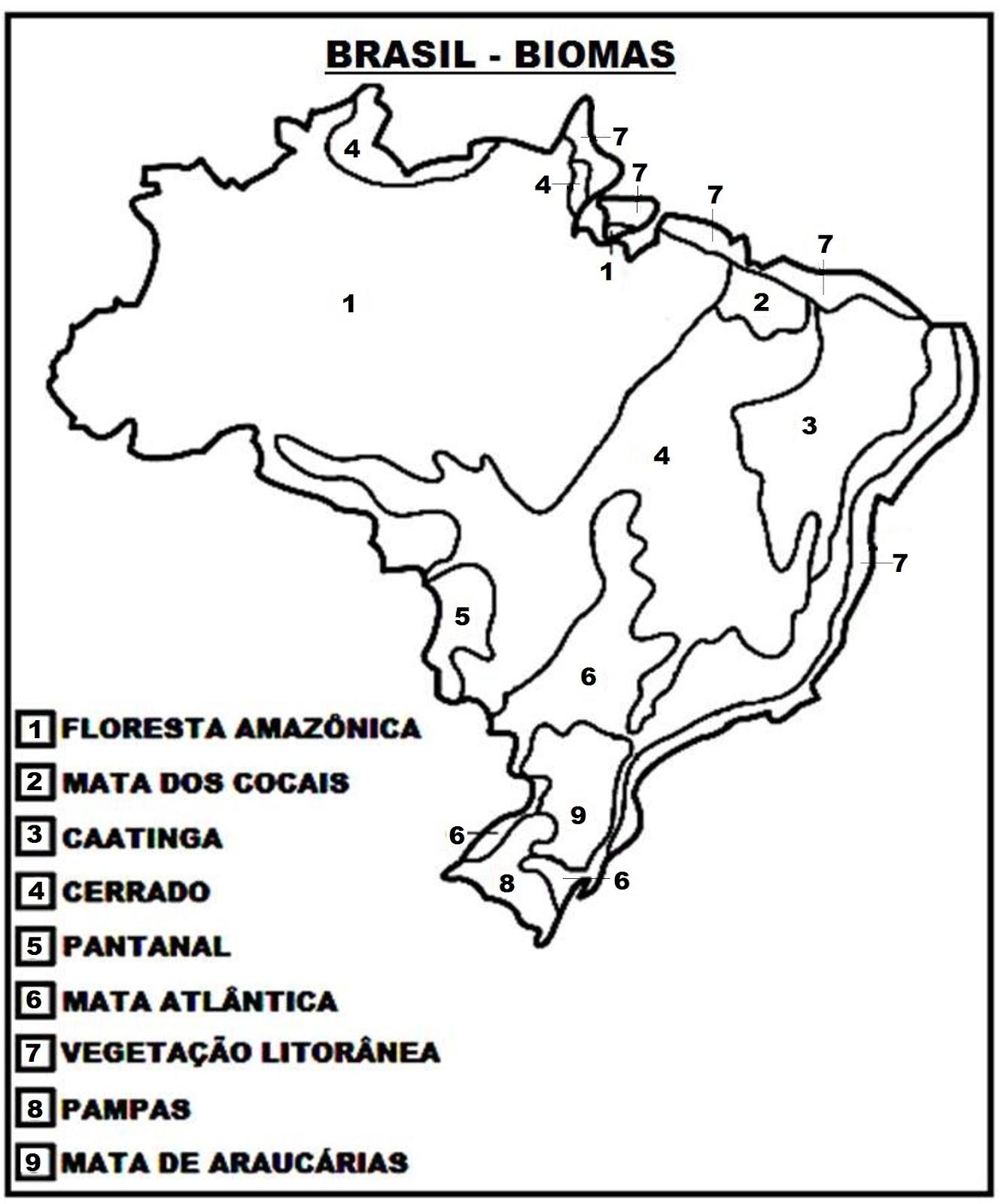 mapa biomas do brasil para colorir suporte geográfico