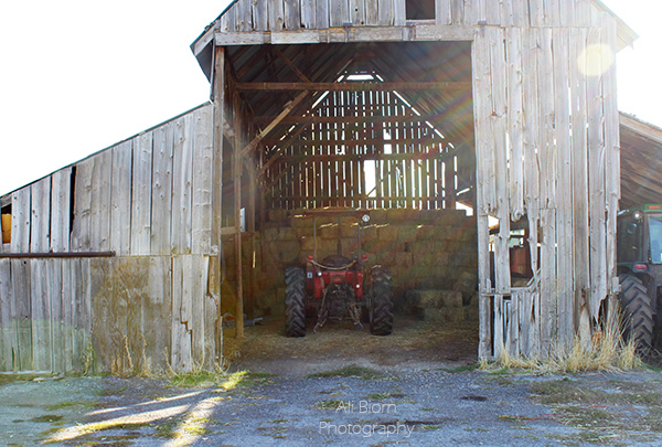 red tractor in old barn with hay