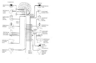 Pembelajaran Melalui TMK: Jun 2012