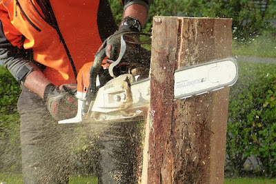 Essential Gears for a Chain Saw Operator