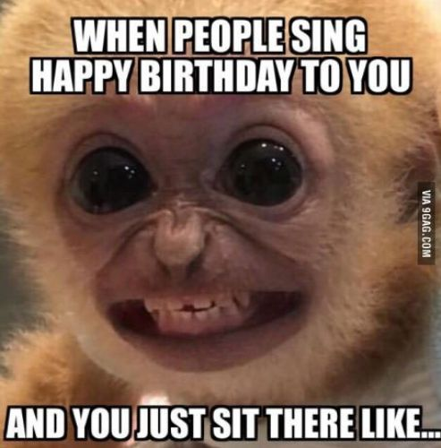 Funny Happy Birthday Meme For Friends : Funny happy birthday memes for guys kids sister