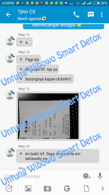 jual smart detox synergy