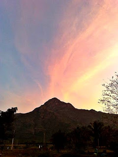View of Arunachala at sunset