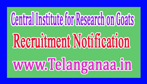 Central Institute for Research on GoatsCIRG Recruitment Notification
