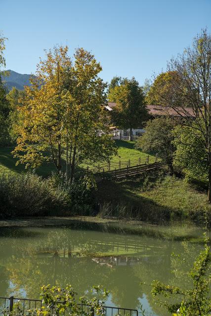 Rundweg Ohlstadt - Kreut-Alm  Freilichtmuseum Glentleiten Schwaiganger  Wandern im Blauen Land 10