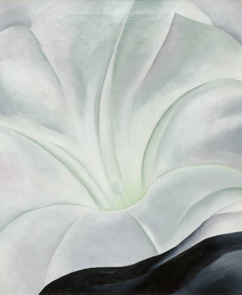 Morning Glory with Black by Georgia O'Keeffe