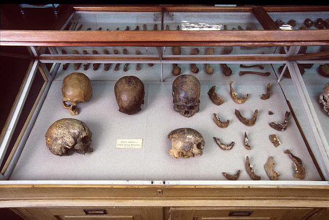 DNA of world's oldest natural mummy unlocks secrets of Ice Age tribes in the Americas