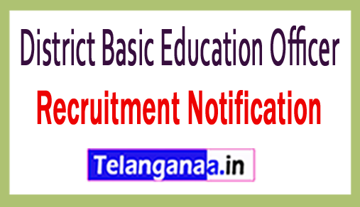 District Basic Education Officer DBEO Recruitment
