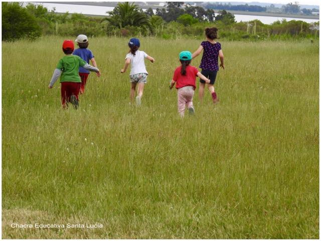 Niños corriendo entre las gramíneas - Chacra Educativa Santa Lucía