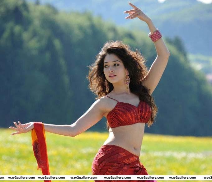 tamanna Tamanna saree sexy pics