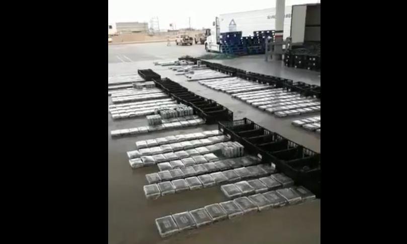 Vídeo: Así localizaron 800 kilos de cocaína escondida entre aguacates en Sonora
