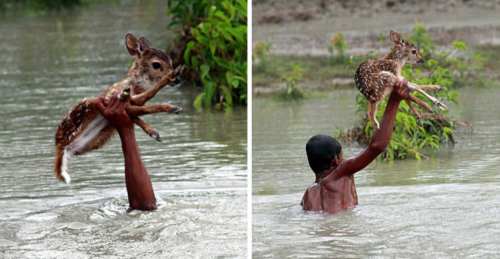 15 imágenes que van a restaurar tu fe en la humanidad