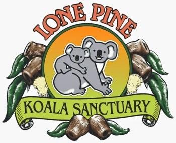 http://stuatthezoo.blogspot.com.au/2013/05/lone-pine-koala-sanctuary-review.html