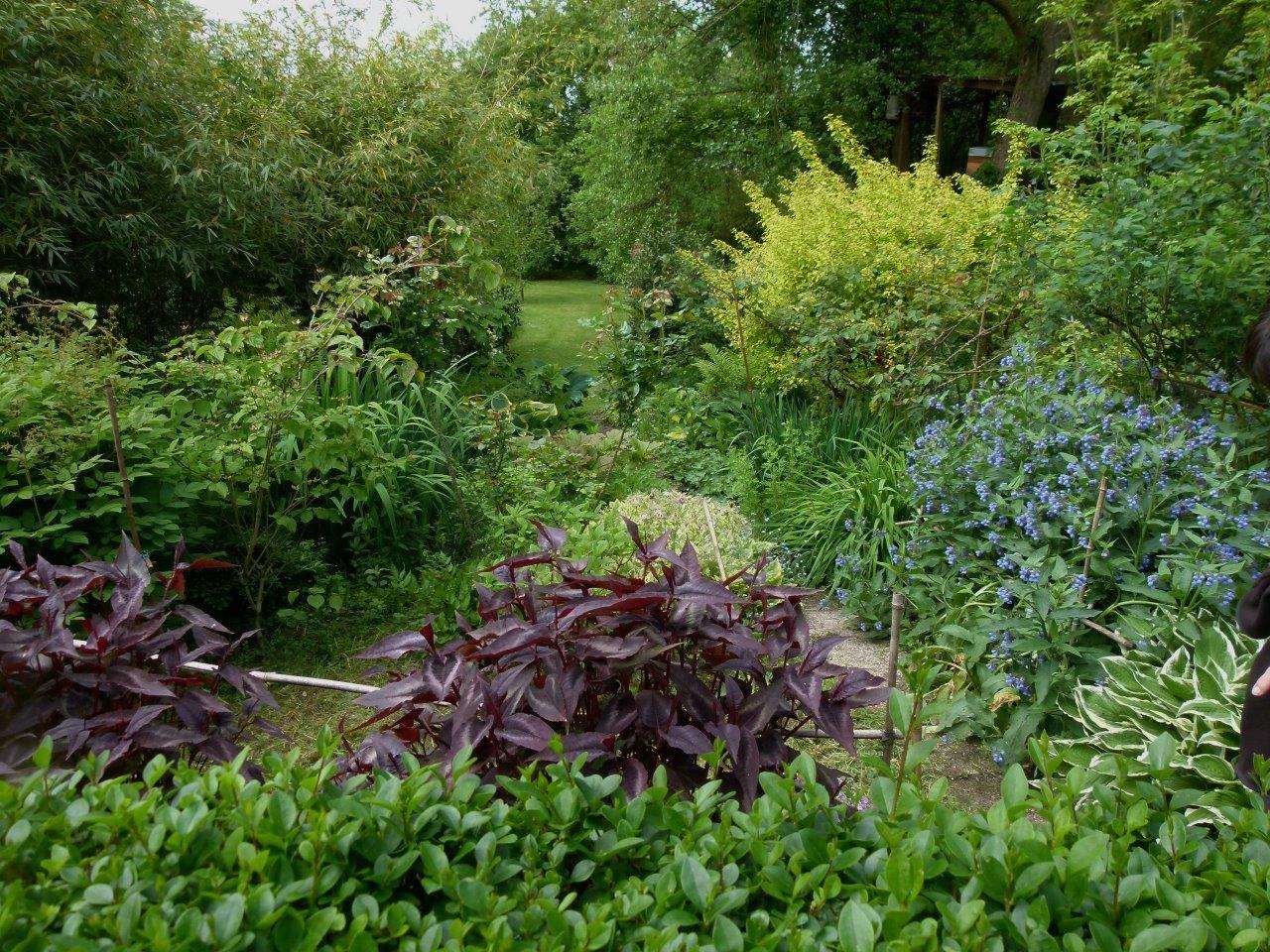 Le blog de parcs et jardins de l 39 oise visite pjo du for Le jardin de catherine