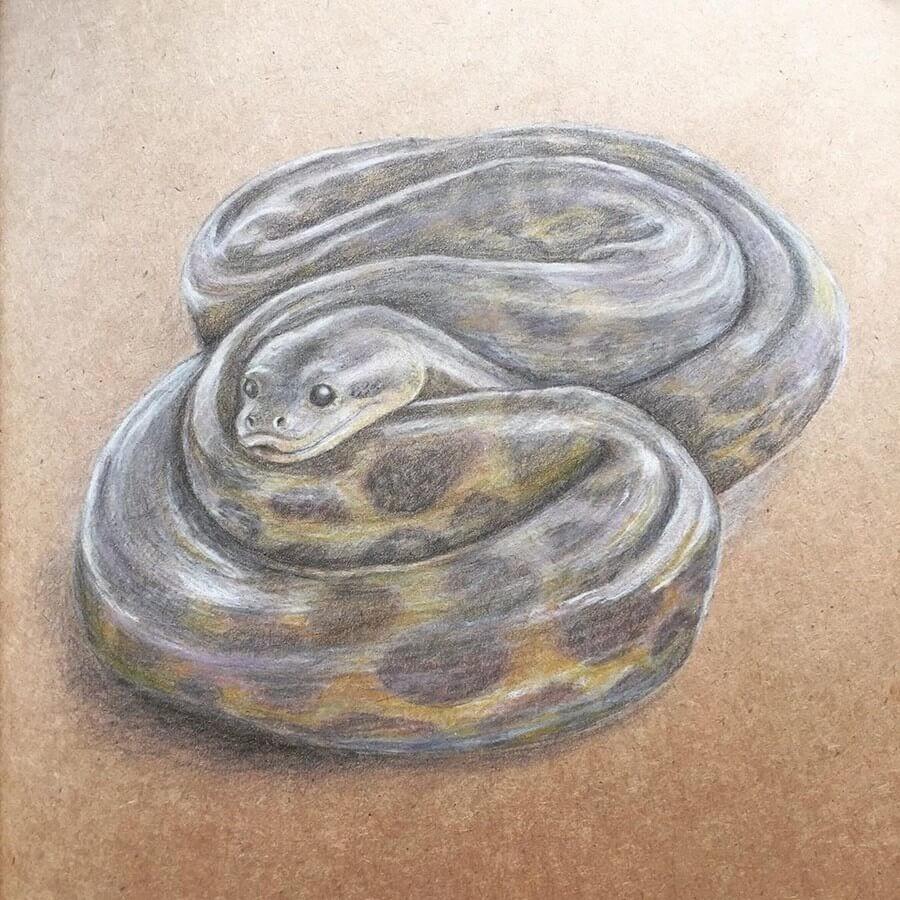 05-Snake-Theartakk-www-designstack-co