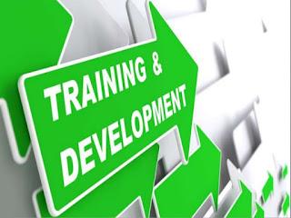 Rancangan (Desain) Pelatihan dan Siklus Pelatihan Menurut Ahli_