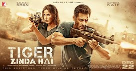 Salman, Katrina film Tiger Zinda Hai Bollywood Highest-Grossing Worldwide Box Office Collection of 2017, Tiger Zinda Hai Crosses 300 Crore Mark, Becomes Highest Grosser Of 2017