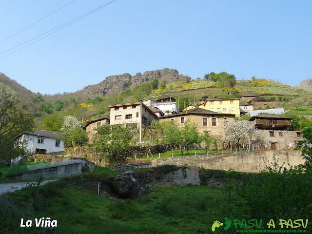Vista del pueblo de la Viña, Cangas del Narcea