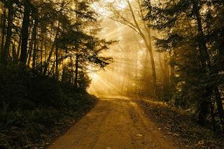 yolumuz ışık