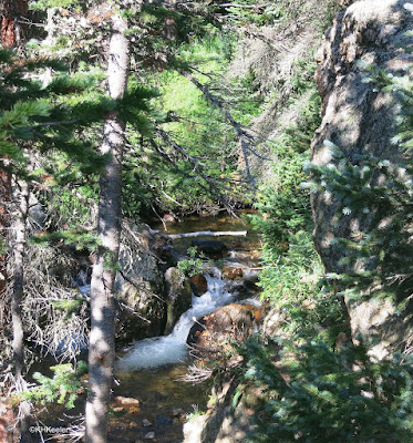 waterfall, Old Fall River Road