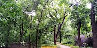 Photo Gallery- Hauz Khash Deer Park