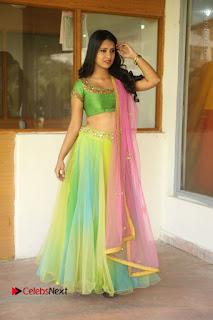 Actress Nikitha Bisht Stills in Lehenga Choli at Pochampally Ikat Art Mela Launch  0392.JPG