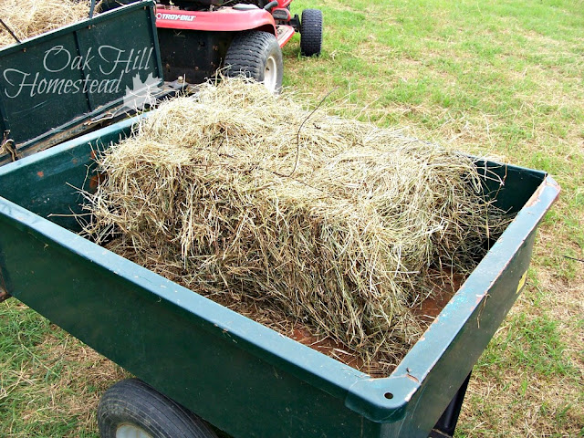 How we bale our hay by hand