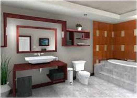 Tips Elegant Guest Bathroom Ideas
