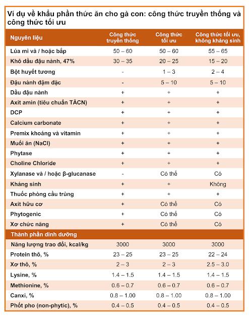 Bảng 1: Trình bày hai công thức tổ hợp thực tế được sử dụng trong điều kiện chăn nuôi gà thịt thương phẩm ở Châu Âu để kiểm tra tính hiệu quả khi nuôi dưỡng gà con bằng khẩu phần khởi động tối ưu và khẩu phần truyền thống.