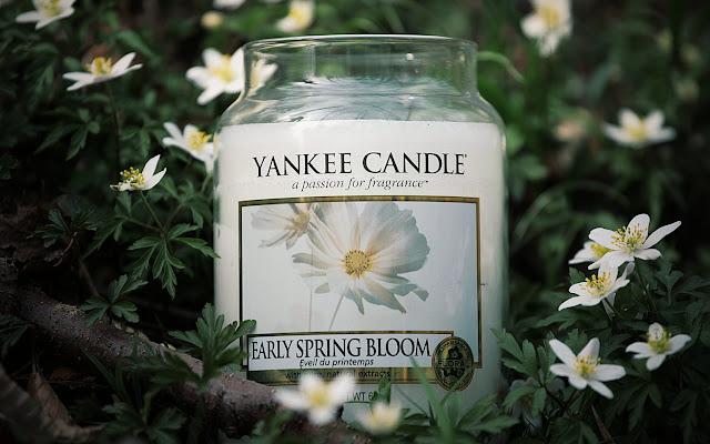 Wiosenne przebudzenie... Yankee Candle Early Spring Bloom  - Czytaj więcej »