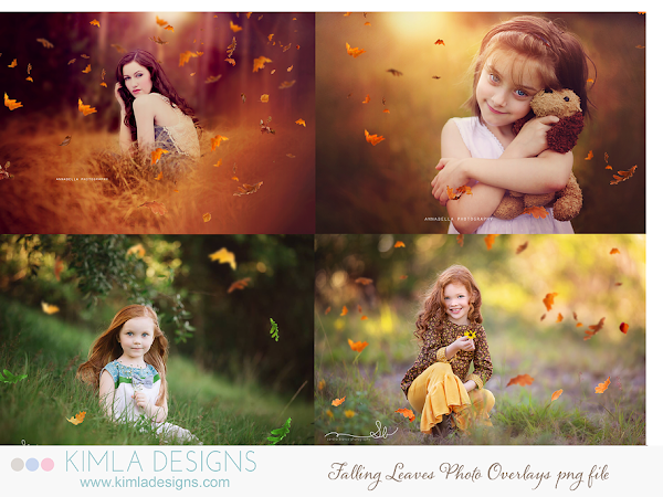 Falling Leaves Photo Overlays for Photographers