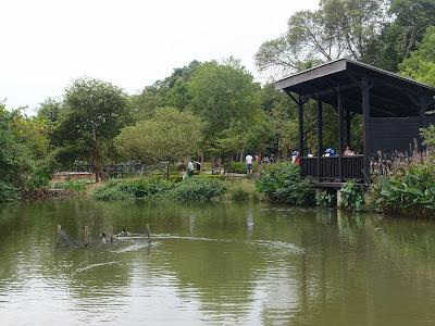 八德埤塘生态公园