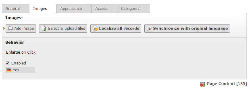 """Localize all records"" und ""Synchronize with original language"" sind verfügbar"
