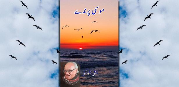 Mausmi Parindey - Short stories by Anil Thakkar