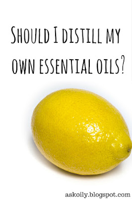 Should I distill my own essential oils no | Hot Pink Crunch