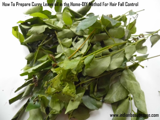 How To Prepare Curry Leave oil in the Home DIY Method For Hair Fall Control | Indian Beauty Zone