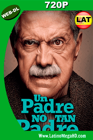 Un Padre No Tan Padre (2016) Latino HD WEB-DL 720p ()