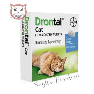 Vitamin Dan Obat Kucing Segitu Petshop