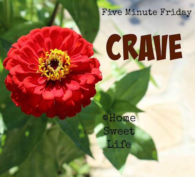 Five minute Friday, writing prompts, crave, fellowship, community
