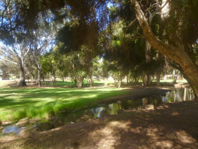Pitman Park Pond